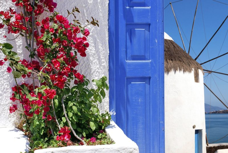 Red flowers, blue doors and a windmill in Mykonos island. Homeric Tours holidays package.