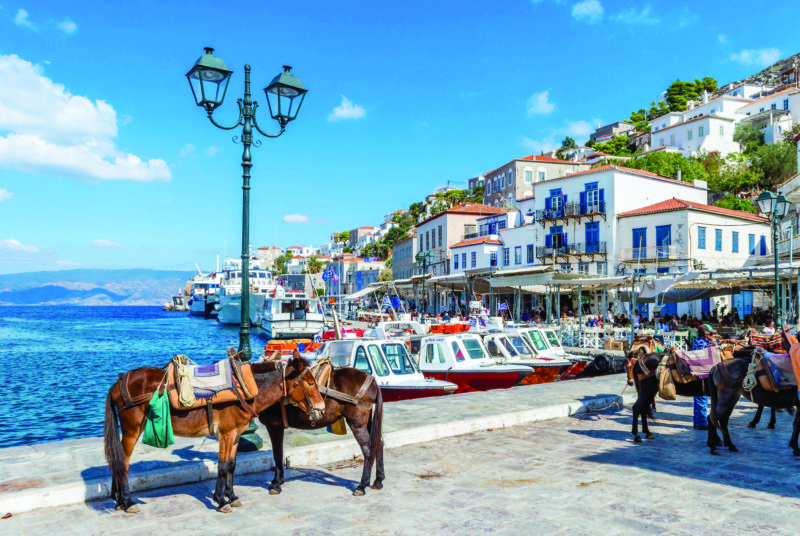 Donkeys by the sea and beautiful traditional houses in a Greek island.